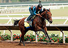American Pharoah Records First Del Mar Breeze