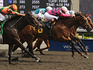 Amiable Grace wins the 2011 Sweet Briar Too.