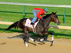 Amie's Dini Has Initial Work at Churchill