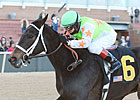 Shippers Invade for Oaklawn&#39;s Fantasy