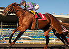 Amis Gizmo, Sparkles' Girl Win at Woodbine