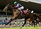 Ami's Holiday Finds Path in Breeders' Stakes