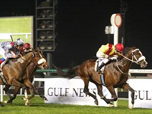 Anaerboio wins the 2014 Al Fahidi Fort.