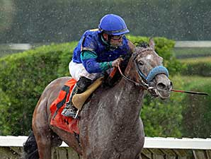 Angelica Zapata wins the 2014 Nancy's Glitter Handicap.