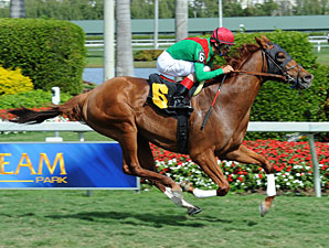 Animal Kingdom to Return in BC Mile