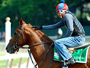 Animal Kingdom at Belmont on June 8, 2011.