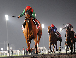 Animal Kingdom Bids for History at Royal Meet