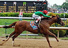 Full Gate of 14 Expected for Preakness