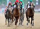 Animal Kingdom Awarded for Classic Success