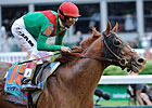 Animal Kingdom Entered in Gulf Allowance