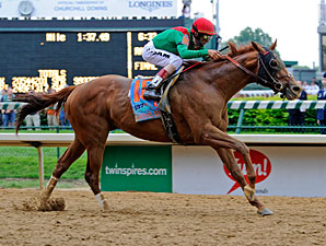 Animal Kingdom to Return in Tampa Bay Stakes