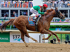Animal Kingdom Roars to Derby Victory