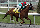 Ky. Derby Trail: Man in Motion