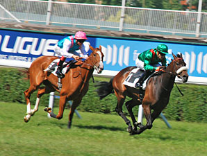 Announce finishes 2nd to Sarafina in the Prix Corrida.