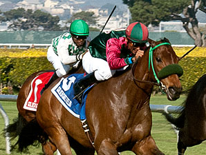 Antares World wins the 2011 Pacific Heights.