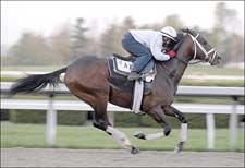 Pletcher Works Derby Trio, Oaks Favorite
