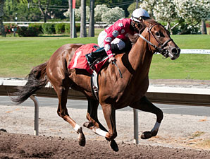 Anytime Magic wins the Everett Nevin  Almeada County Stakes.
