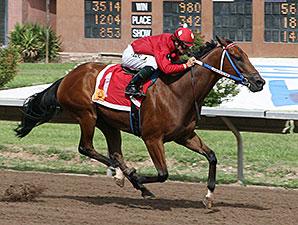 Anzaki wins 2013 Casey Darnell Pony Express
