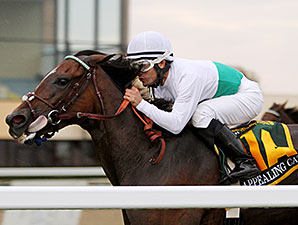 Appealing Cat wins the 2014 Mrs. Penny Stakes.