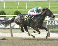 Belmont Racing Report: Apple of Kent Shines in Shuvee
