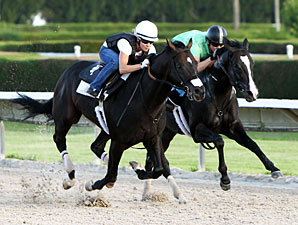 Apriority (outside) and Bahamian Squall (inside) work at Calder.