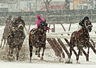 Winter Racing Focus of New York Hearing