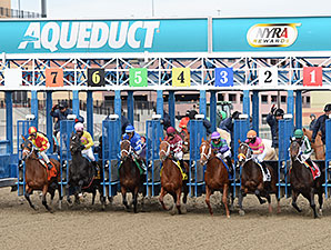 Nyra Announces Aqueduct Stakes Schedule Equibase