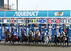 Fourteen Stakes Set for Aqueduct Spring Meet