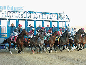 Issues Delaying VLT Casino at Aqueduct