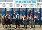 Top Flight, Withers Return to Aqueduct Meet