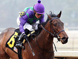 Aragorn Ami wins the 2014 Martha Washington.