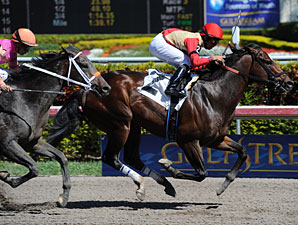 Arch Traveler Wins Key Gulfstream Allowance