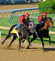 Archarcharch Sizzles Five Panels at Churchill
