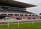 Arlington Releases 2011 Stakes Schedule