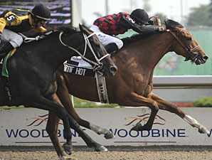 Artie Hot overtakes favorite True Metropolitan to win the Chinese Cultural Centre Seagram Cup at Woodbine.