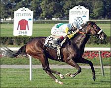 Artie Schiller Blazes to Belmont Track Mark
