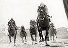 Miles To Go: Metropolitan Handicap History