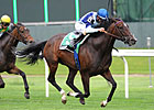 Aruna, Banimpire Battle in New York Stakes