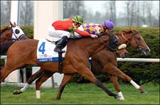 Ascertain Finds Answer in Closing Day Elkhorn Win