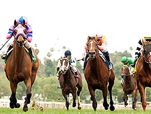 Ashleyluvssugar wins the Charles Whittingham Stakes.