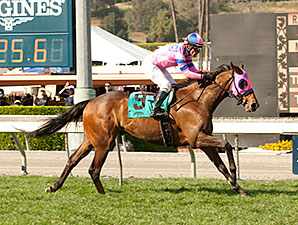 Ashleyluvssugar wins the 2015 San Luis Rey Stakes.