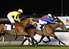 Aspectoflove Determined Winner of Cape Verdi