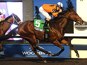 Asserting Bear Grabs Coronation Futurity