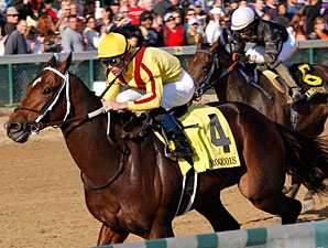 Asmussen: Jerome Handicap Next for Astrology
