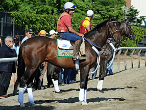 Atigun - Belmont Park, June 1, 2012