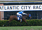 Atlantic City Draws 9,822 for All-Turf Card