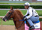 Daily Oaks Notes: April 30