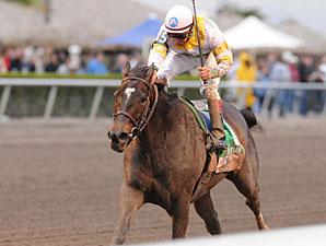 Aurora Lights wins the 2010 Sabin.