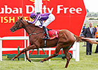 Dual Classic Derby Winner Australia Retired