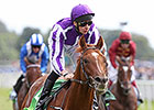 Australia Easy Juddmonte International Winner